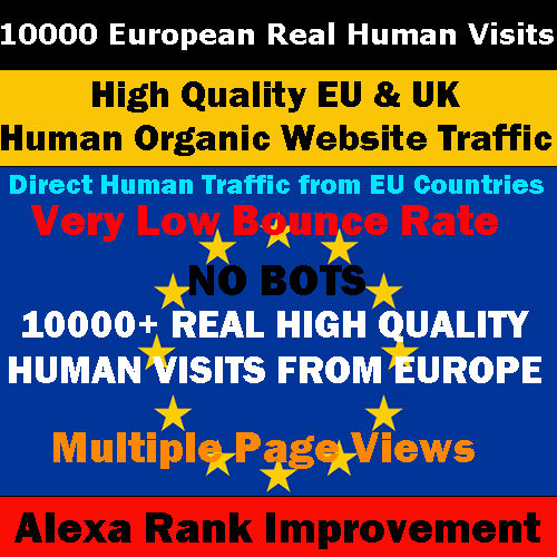 eu website traffic service