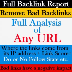 full backlink report service