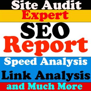 website audit report